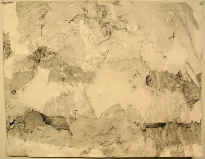 Michael DeLia, Veiled Landscape