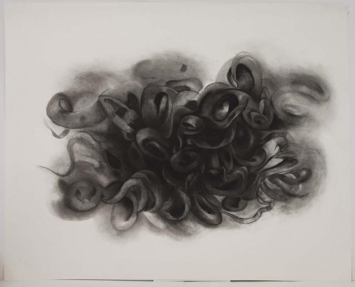 """Janell O'Rourke, Puff, charcoal on paper, 45"""" x 35.5"""", 2008"""