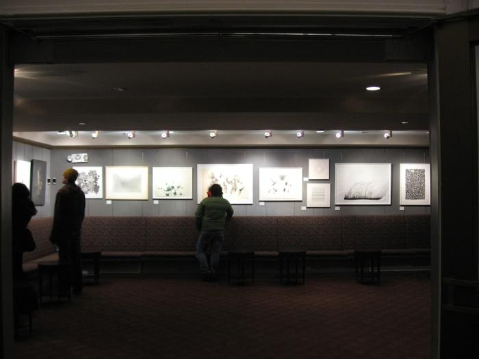 Variations in Black and White: at BAM