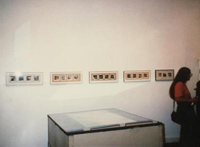 "Carrie Waldman, ""New Work from the Anza-Borrego Desert"""