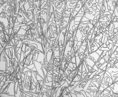 Ellen Kahn, Drawing 013