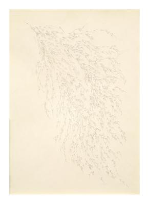 Nishijima Kazuhiro, Untitled
