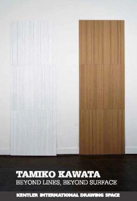 Tamiko Kawata, Beyond Lines, Beyond Surface