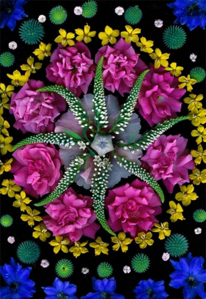 Portia Munson, Balloon Flower Gooseneck