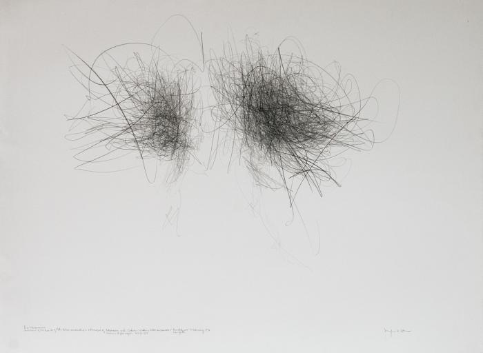 Live Transmission: Movement of the Hands of Petr Kotik