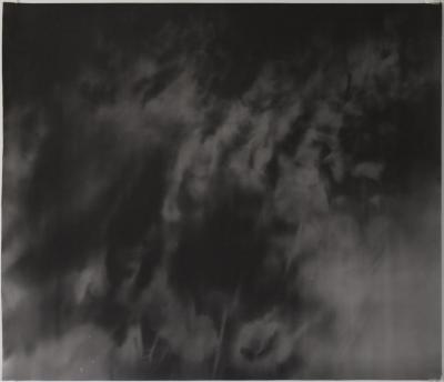 "Jared Handelsman, ""Moonlight Landscape"", silver print, photogram, 22"" x 28"", 1998"