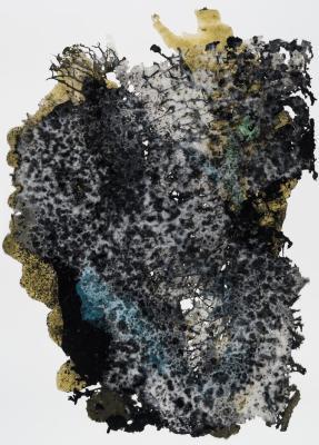 Jarrod Beck, Phenocryst