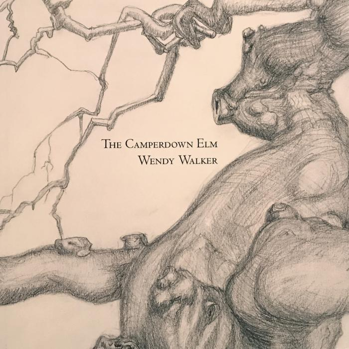 Book Launch: Wendy Walker, The Camperdown Elm