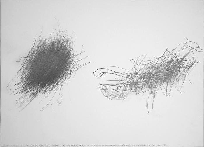 Live Transmission: Movement of the Hands of Motohiko Tsuji