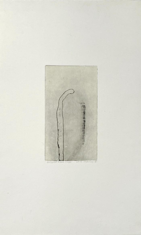 Karen Helga Maurstig, Uventet Skygge (Unexpected Shadow)