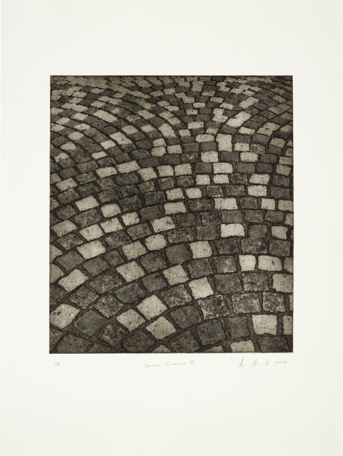 """Ann Aspinwall, """"Common Ground II"""" Collagraph, Image 17 3/4"""" x 15 1/2"""", sheet 30"""" x 22"""", 2004"""