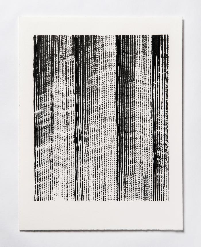 Lynne Tobin, Line Studies Series II #1, ink on paper, 15 x 11.5 in, 2017 (photo credit: Kenneth Elk)