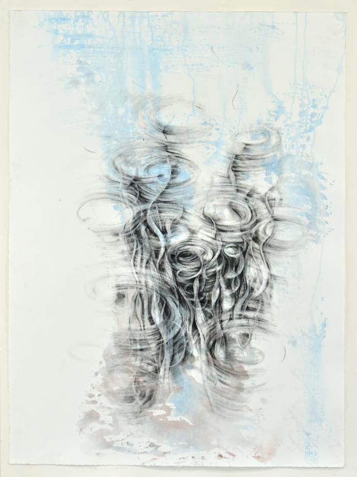 """Dawn Lee, Aquatic Series #4, Charcoal and India ink on paper, 30"""" x 22"""", 2012"""