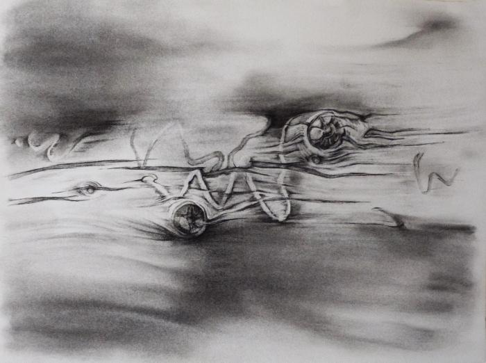 """Dawn Lee, Great Sand Dunes, Elements 1, charcoal on paper, 11"""" x 15"""", 2012"""