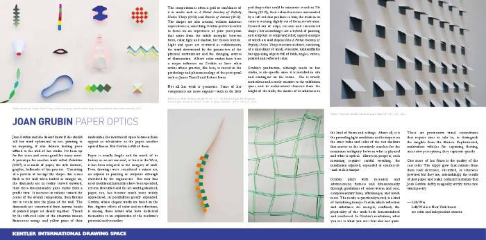 Joan Grubin, Paper Optics